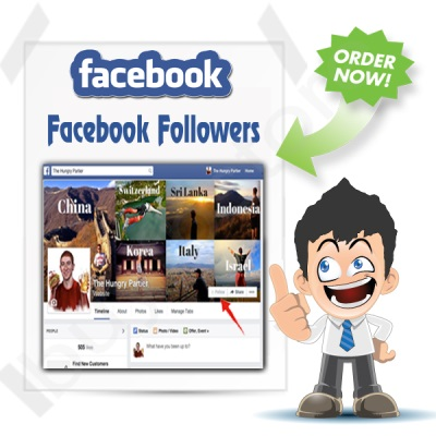 buy instagram followers 2013